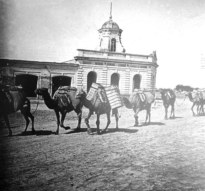 Boukhara, caravane de chameaux dans une rue créée par les Russes, photographie de Léon Blot en 1905.png